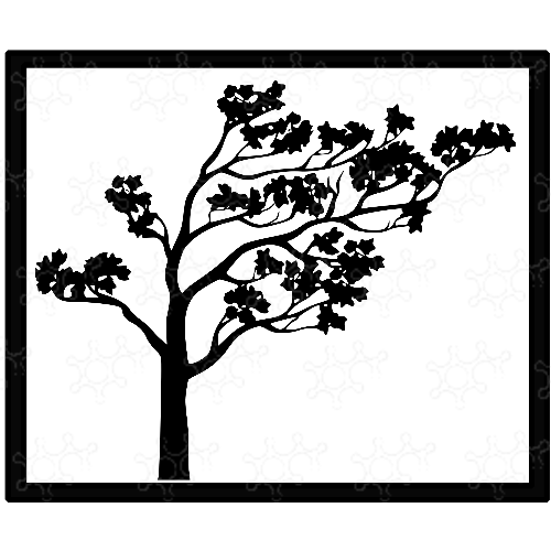 Albero giapponese Sakura