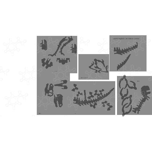 tirannostarkosauro