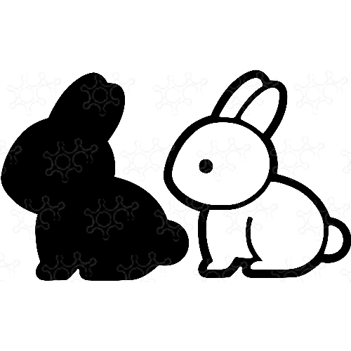 Porta confetti coniglio pasquale